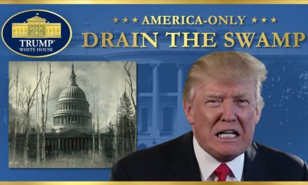 DRAINING THE SWAMP