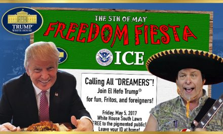 The 5th of May FREEDOM FIESTA