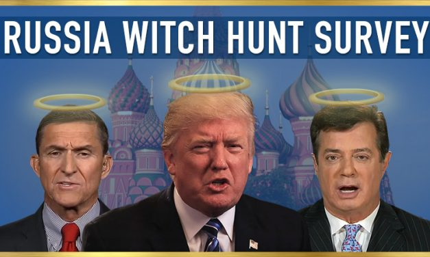 Russia Witch Hunt Survey